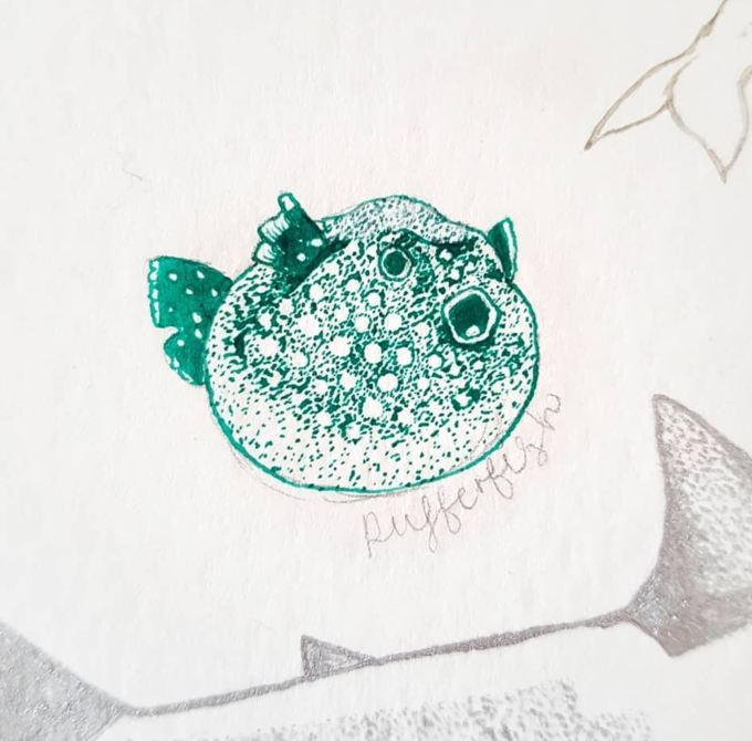 pufferfish #wip