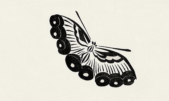 Yatsuo_no_Tsubaki_Butterfly_Detail