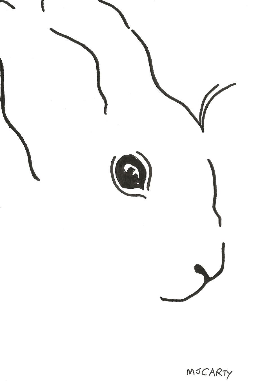 1_WhiteRabbit_SCAN_CROPPED
