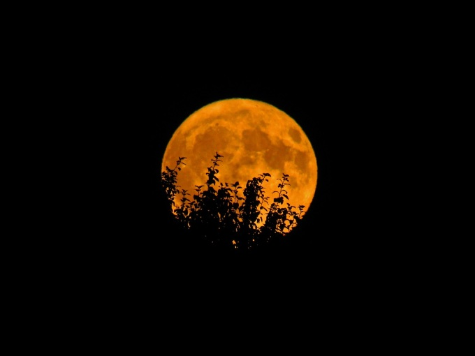 Full_Harvest_Moon_in_WA_9-24-18_-_Flickr_-_Landscapes_in_The_West